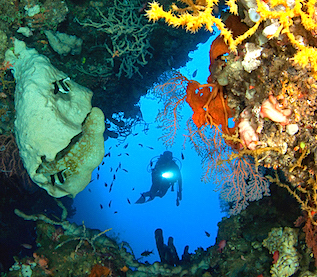The Phinisi Charter vessel and liveaboard WAOW cruising, sailing and scuba diving in Indonesia Papua Barat Cenderawasih,  Lembeh Strait, Manado, Celebes Sea to Sangihe